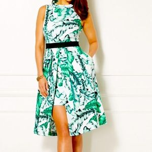 NWT Eva Mendes Freya Palm Print Dress